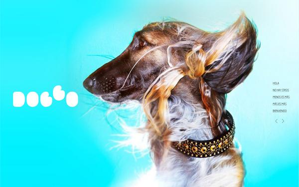 dog_go_6
